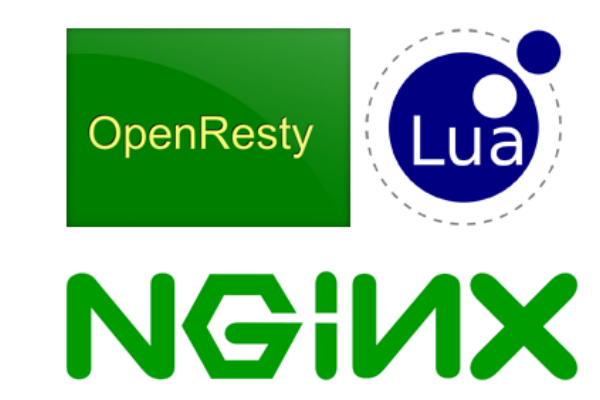 James Butherway explains the reasons for testing Nginx functionality with Lua unit tests.